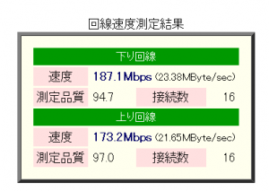 20101224132833-300x213